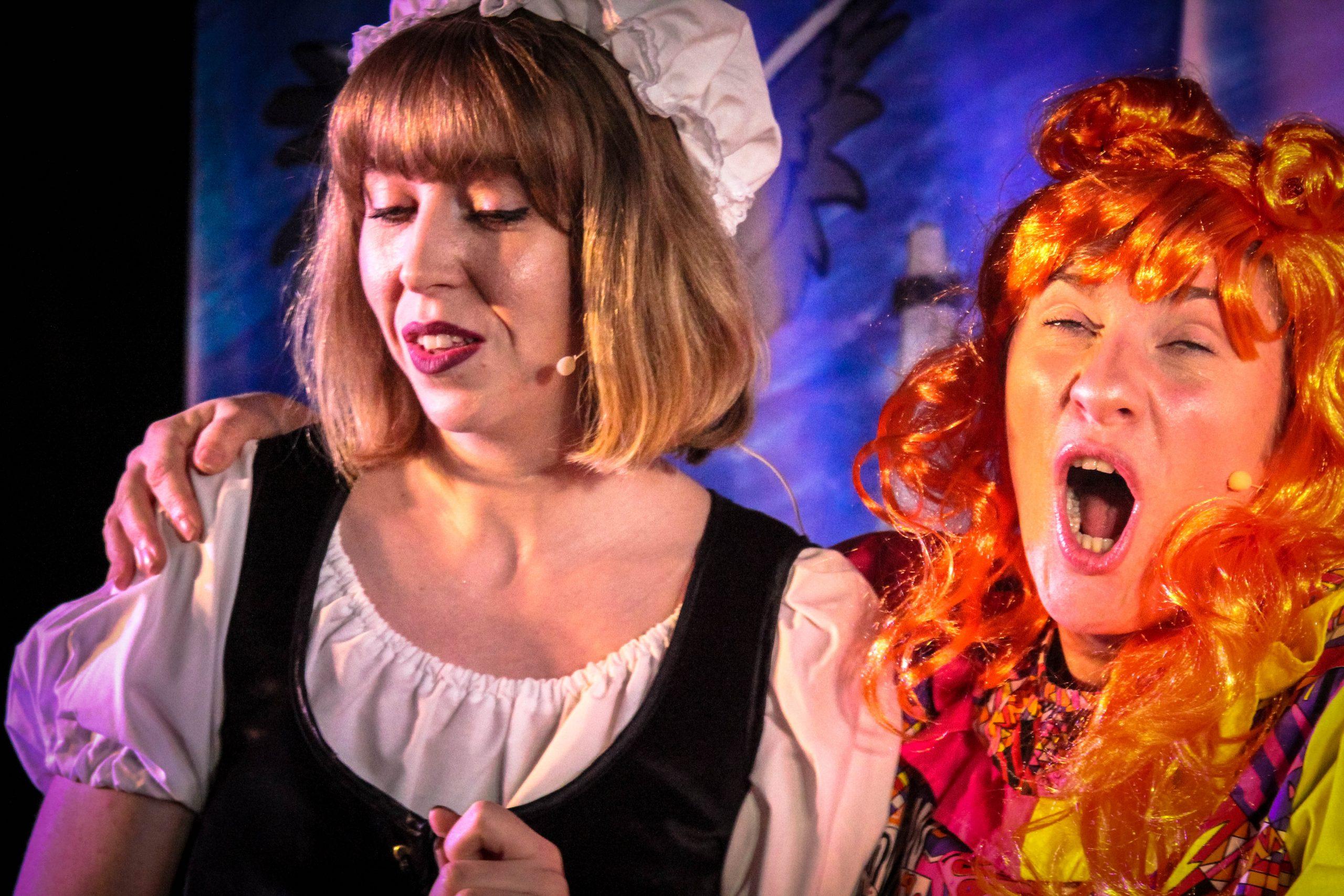 Touring Pantomime Company 2